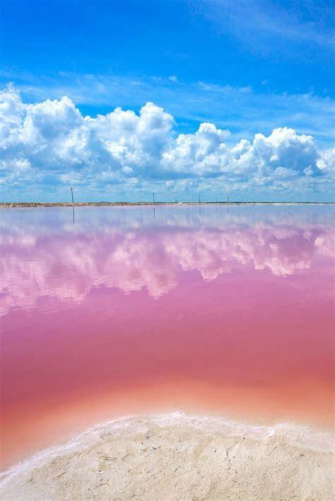 pink lake best 25 pink lake ideas on pinterest pink lake western