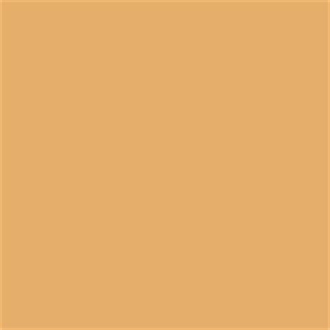 yam paint color sw 6643 by sherwin williams view interior and exterior paint colors and color