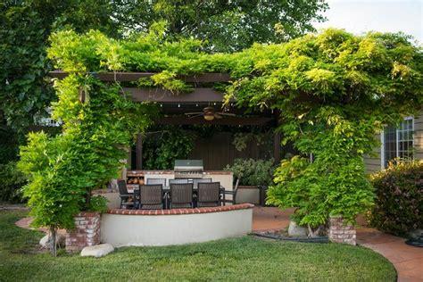 sichtschutz pflanzen terrasse so errichten sie einen sichtschutz auf ihrer terrasse