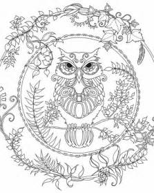 free owl coloring pages for adults brightbird free coloring pages stuff