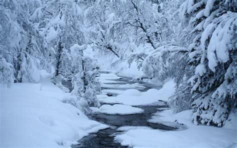 wallpaper abyss winter winter full hd wallpaper and background image 2560x1600