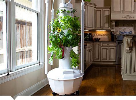compare  indoor indooroutdoor growing systems