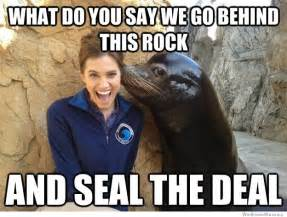 pick up line seal meme weknowmemes