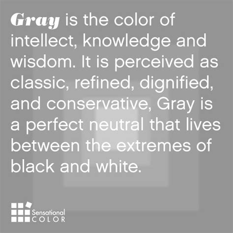 color of wisdom 17 best ideas about grey on gray color black