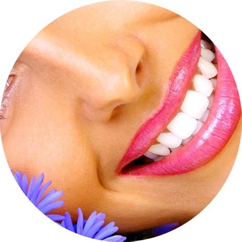 tanning bed teeth whitening body heat tanning luxury tanning at affordable prices