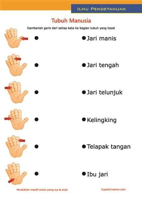 tattoo huruf mandarin 1000 images about anak2 on pinterest polka dots cars