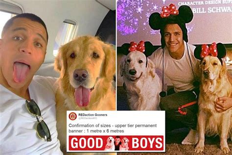 Alexis Sanchez Dogs Banner | arsenal fans create bizarre banner dedicated to alexis