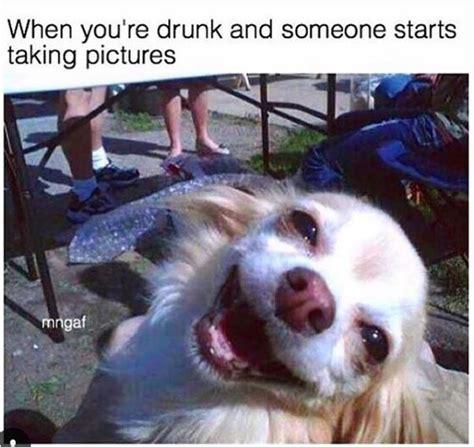 Funny Drunk Memes - 25 best alcohol memes ideas on pinterest