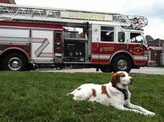lincolnton fire department fire dogs on pinterest fire department volunteer fire