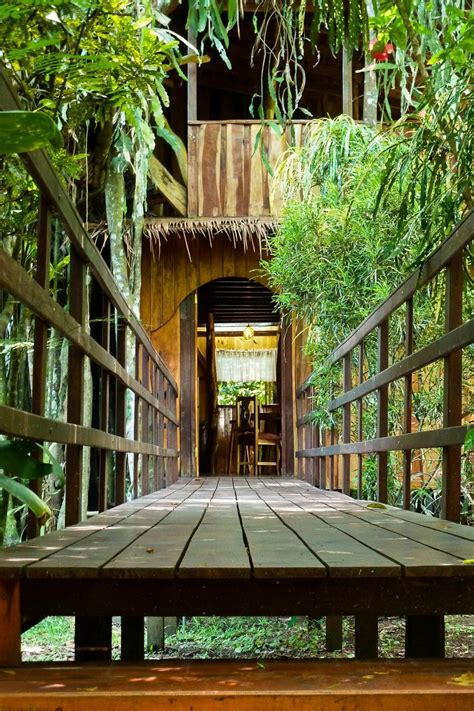 tropical treehouse vacation live out jungle book fantasies in these treehouse retreats