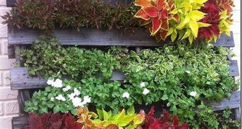 giardini verticali fai da te giardini fai da te progettazione giardini giardini fai