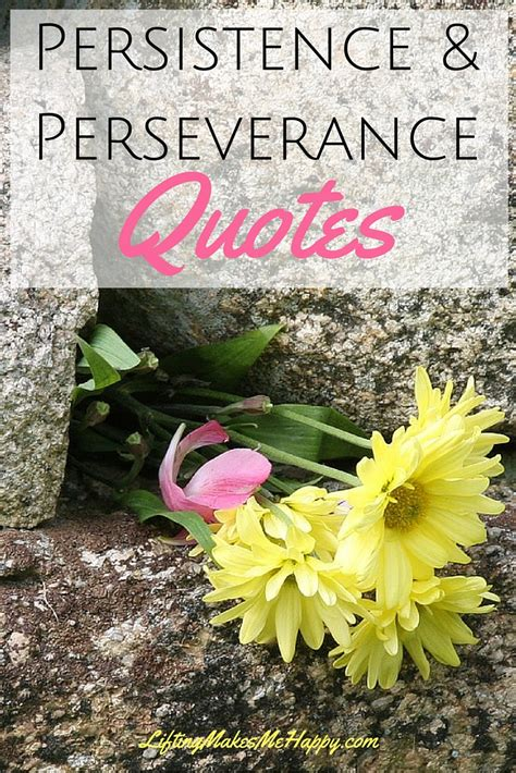 www happy inspirational quotes about persistence perseverance to