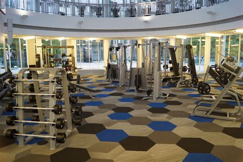 home gym design companies gymnasium interior design abc consultants pty ltd