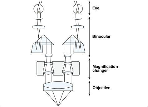 binocular parts diagram binocular parts diagram 28 images standard binocular