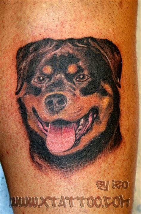 shaka zulu rottweiler the gallery for gt zulu tribal tattoos