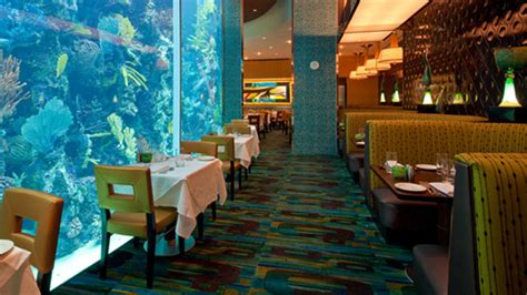 Hours For Chart House Las Vegas Fine Dining Seafood Restaurant
