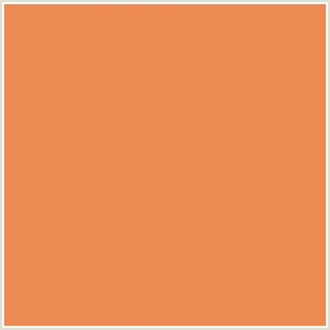 what colors go with burnt orange colors that go with burnt orange 28 images logo color