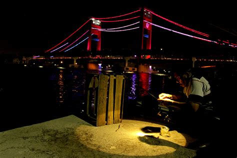 denyut nadi bahari  jembatan ampera mongabaycoid