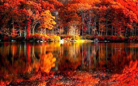 Fall foliage river autumn red lake reflections shore
