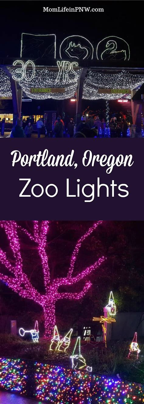 Life Is Precious Get Out Make Memories Mom Life In Portland Zoo Lights Hours