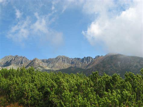 wallpaper pemandangan awan gunung awan pemandangan pohon