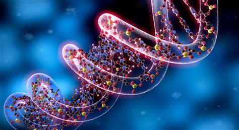epigenetica e alimentazione diabete di tipo 2 genetica ed epigenetica tuttodiabete it