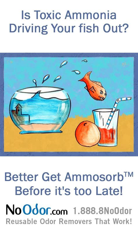 17 best images about ammonia smell solutions on pinterest the o jays freshwater aquarium and