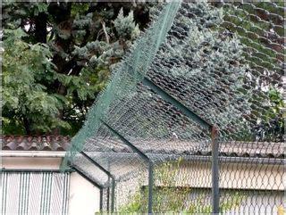 reti da giardino rete per gatti giardino casamia idea di immagine