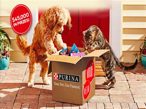 Sweepstakes Expiring Today - expiring today win purina 174 prize packages blissxo com