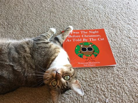 twas the before as told by the cat books 25 gifts for the cat lover in your