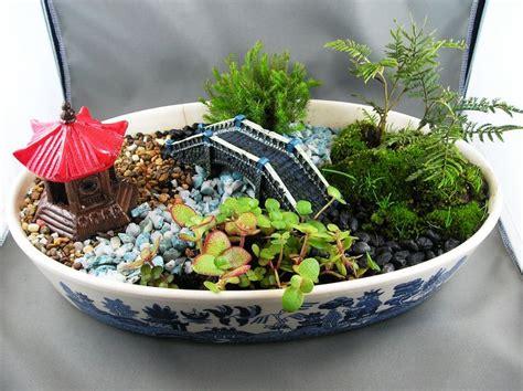 Images Of Dish Garden by Dish Garden Dish Gardens