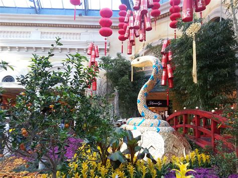 new years botanical gardens botanical gardens new years 28 images new york