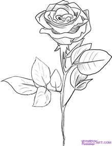drawings of roses pictures archives pencil drawing