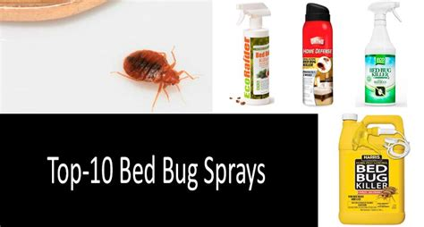 top  bed bug sprays updated  buyers guide
