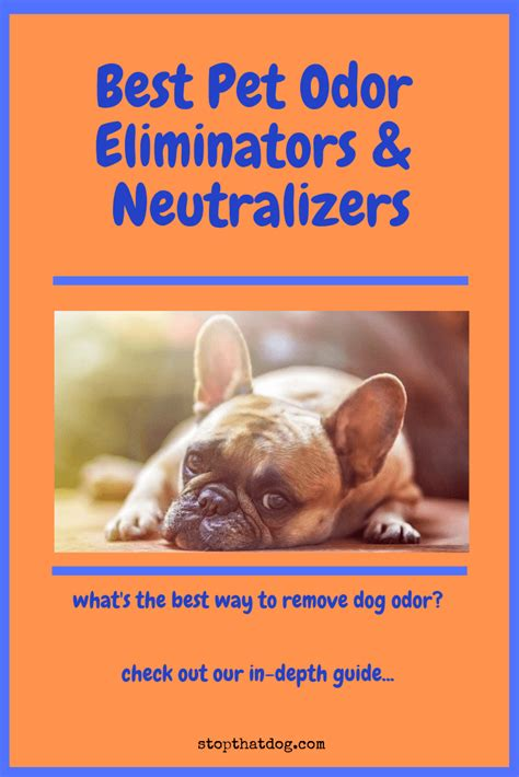 pet odor eliminators neutralizers heres