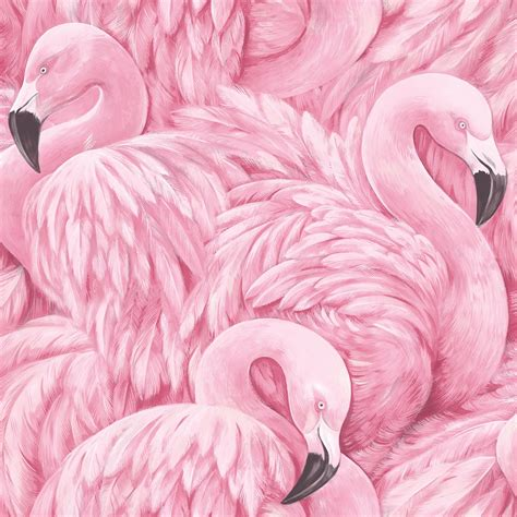 wallpaper with pink flamingos new from rasch is this bold and quirky pink flamingo