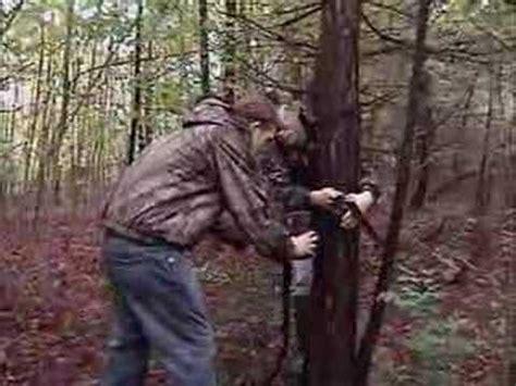 how to set up a trail camera/trail camera setup | doovi