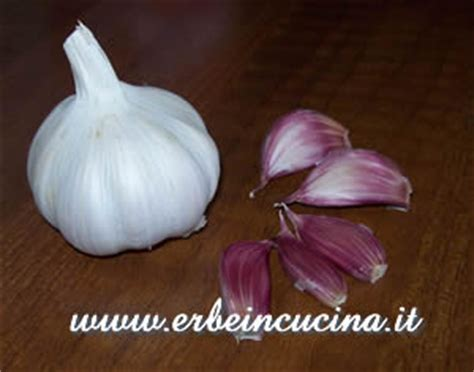 testa di aglio erbe in cucina ricetta bagna cauda piemontese