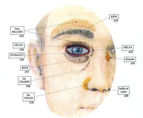dolore occhio destro interno morfologia corpo