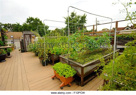 Chicago Rooftop Stock Photos Chicago Rooftop Stock Rooftop Vegetable Garden