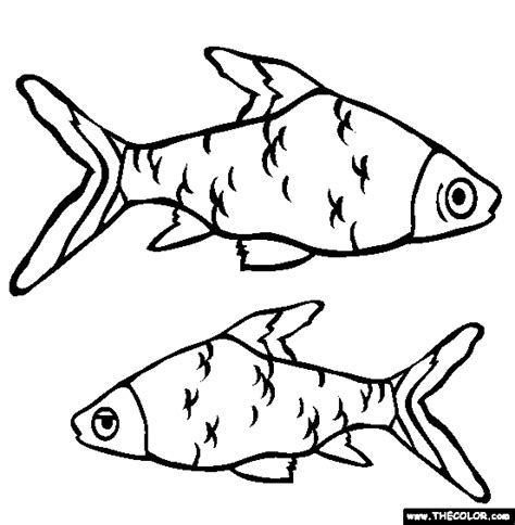 scary shark coloring page free scary shark coloring pages
