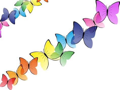 Butterfly P beautiful butterflies backgrounds animals multi color