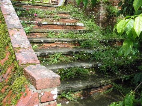 Treppe Bauen Garten by Treppe Garten Carprola For