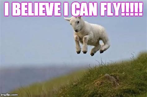 I Believe I Can Fly Meme - i believe i can fly meme 28 images i believe i can fly