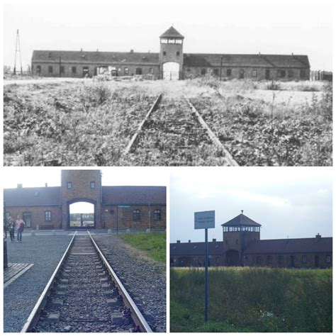 auschwitz before after thinglink