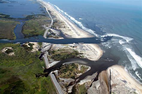 Nc Backyard Birds Federal Report Rapid Loss Of Coastal Wetlands Harming