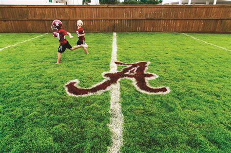 backyard football game backyard football field more than a field of dreams
