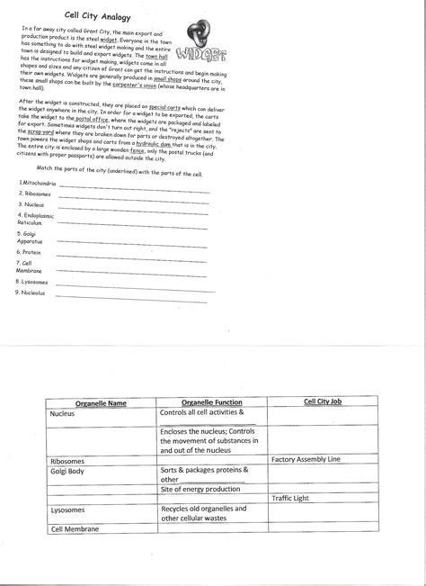 Cell City Worksheet by Worksheets Cell City Analogy Worksheet Answers