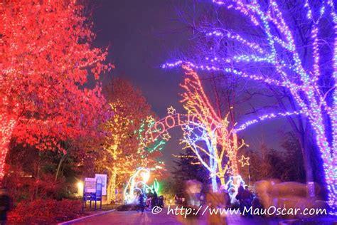 washington zoo lights natal em washington dc as luzes do zoolights mauoscar