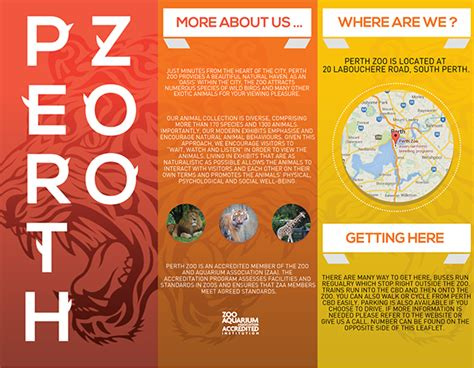 zoo brochure template brochure design zoo search art217 brochure